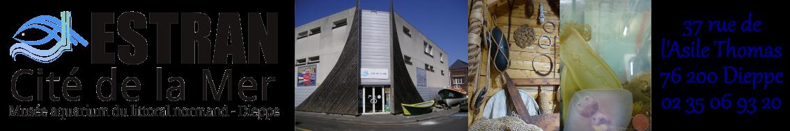Aquarium ESTRAN Cité de la mer Dieppe