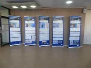 Exposition sur les mammifères marins @ ESTRAN - Cité de la Mer | Dieppe | Normandie | France