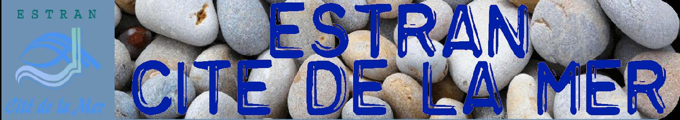 ESTRAN Dieppe